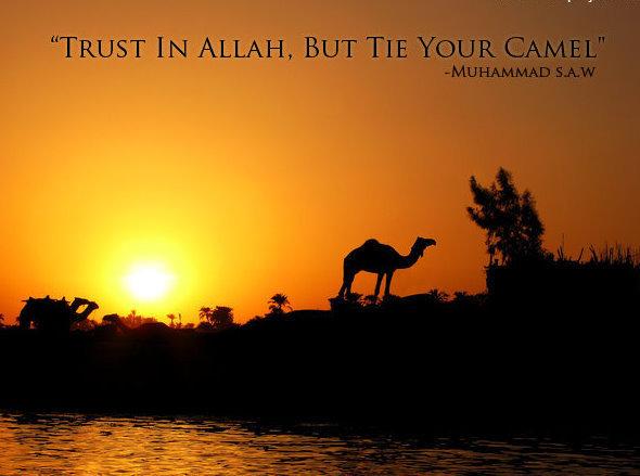 Trust in Allah